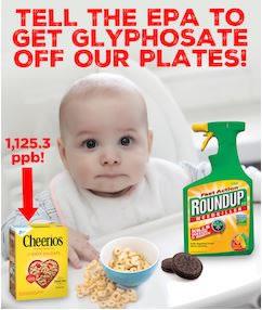 GMO-Free, start