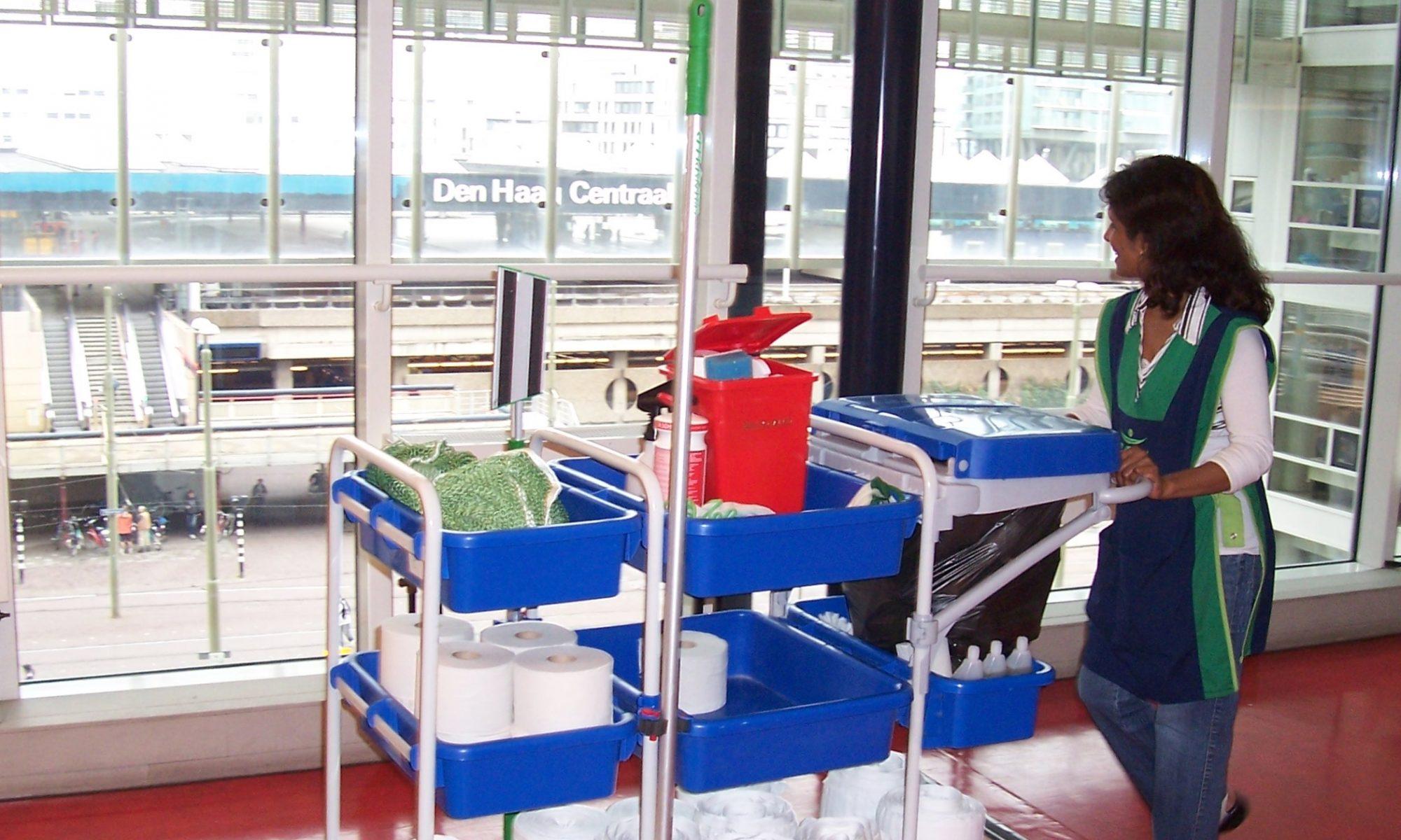 Hoorzitting VROM anjer 2007 interieur